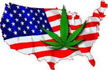 Marijuana, le verità non dette