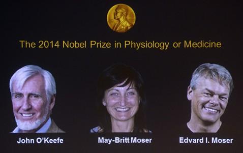 Nobel per la medicina per il Gps del cervello: il commento a Radio 2