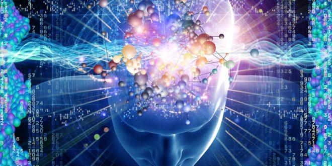 Ecco quanto consuma il cervello
